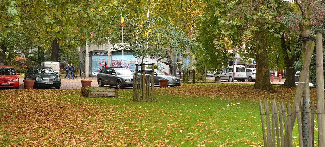 Un parc avec des arbres et des voitures garées devant.
